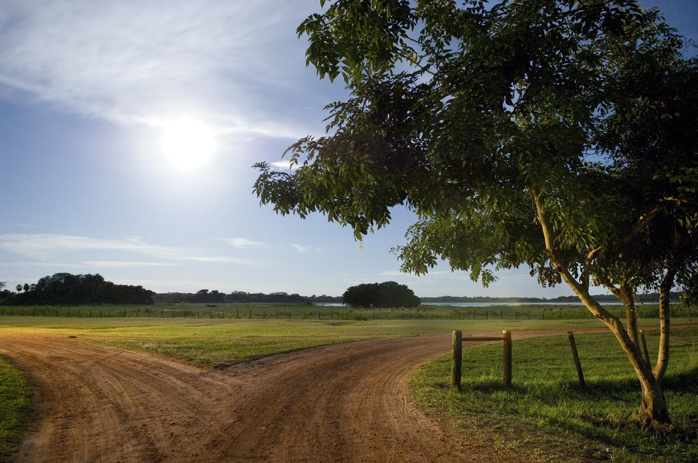 AL_LE_Cross Roads, Pantanal, Brazil (from the Full
